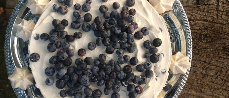 blåbær og marengsis