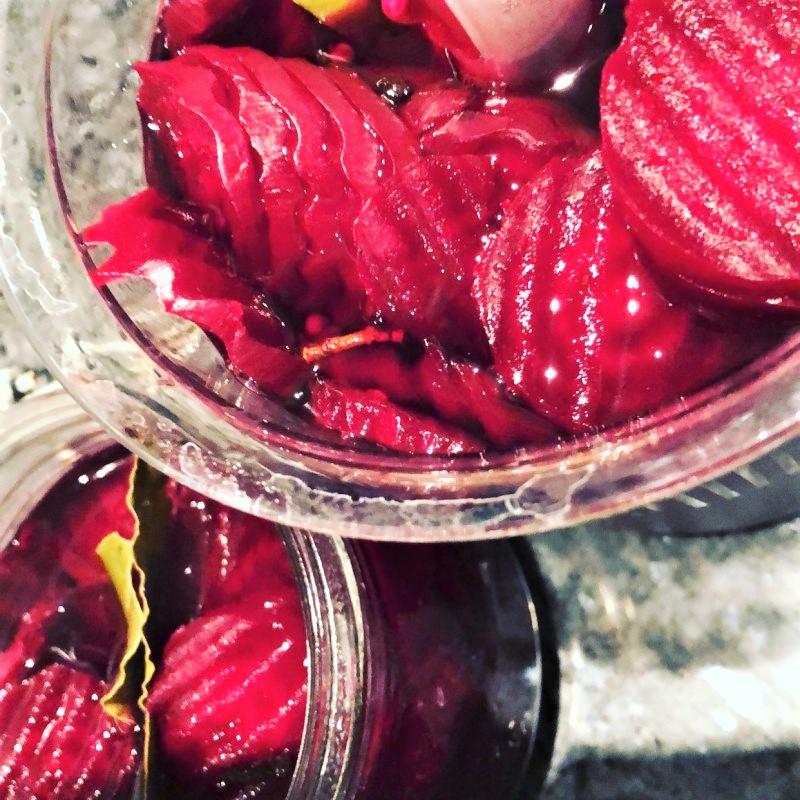 Rødbeder (Maiken)